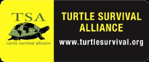 TURTLE SURVIVAL ALLIANCE(タートル・サバイバル・アライアンス)