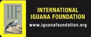 I.I.F.(International Iguana Faundation)